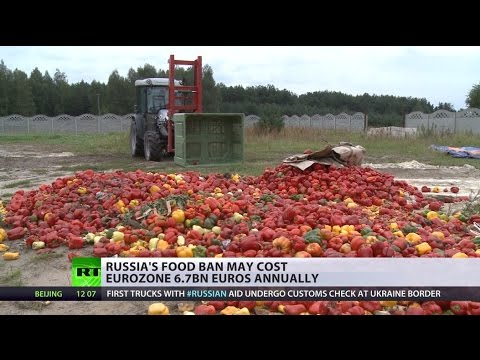 Big Bite: Russia's food ban may cost EU 6.7bn yearly