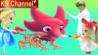 Búp bê KN Channel DỰNG XƯƠNG KHỦNG LONG VÀ XỊT SƠN MÔ HÌNH TRONG BẢO TÀNG KHỦNG LONG