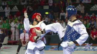 Taekwondo the Olympic Dream Cup 2016