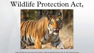 wild animals protection