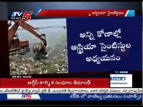 Austria Scientists Perfect Plan For Hussain Sagar Cleansing : TV5 News