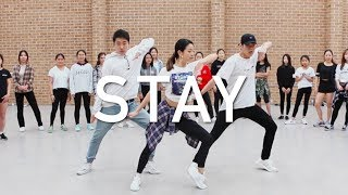 download lagu Zedd, Alessia Cara - Stay  Imiss Choreography  gratis
