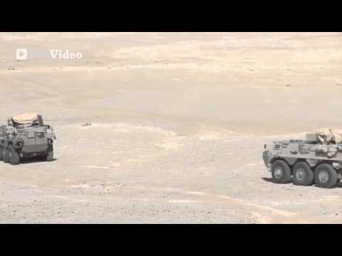 Marines, Sailors, and Qatar Land Forces - Exercise Eagle Resolve 13