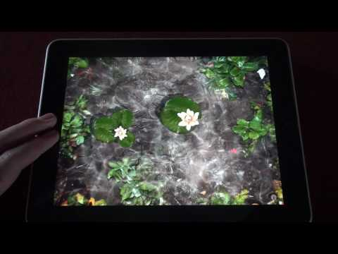 iPad App Review - Pocket Pond HD