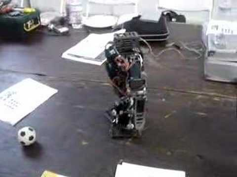 Robot from Japan
