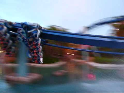 Sea World Orlando Montage Video