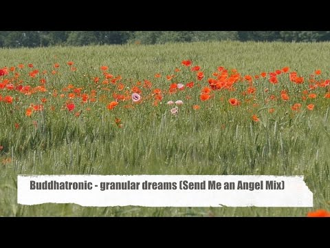 Buddhatronic - Granular Dreams (Send Me An Angel Mix) - field of poppies Full HD