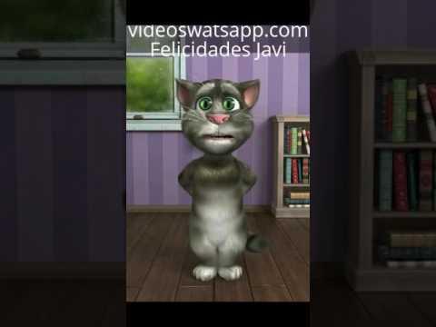 Gato Tom-Feliz Cumpleaños Javi