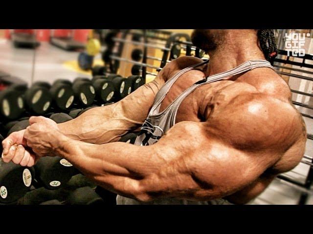 Видео галерея - Грудь, трицепс, плечи. Тренировка на качество мышц. - Сай