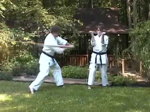 Sanchin Kata Bunkai Preview 03 - www.yoseikankarate.com Image 1