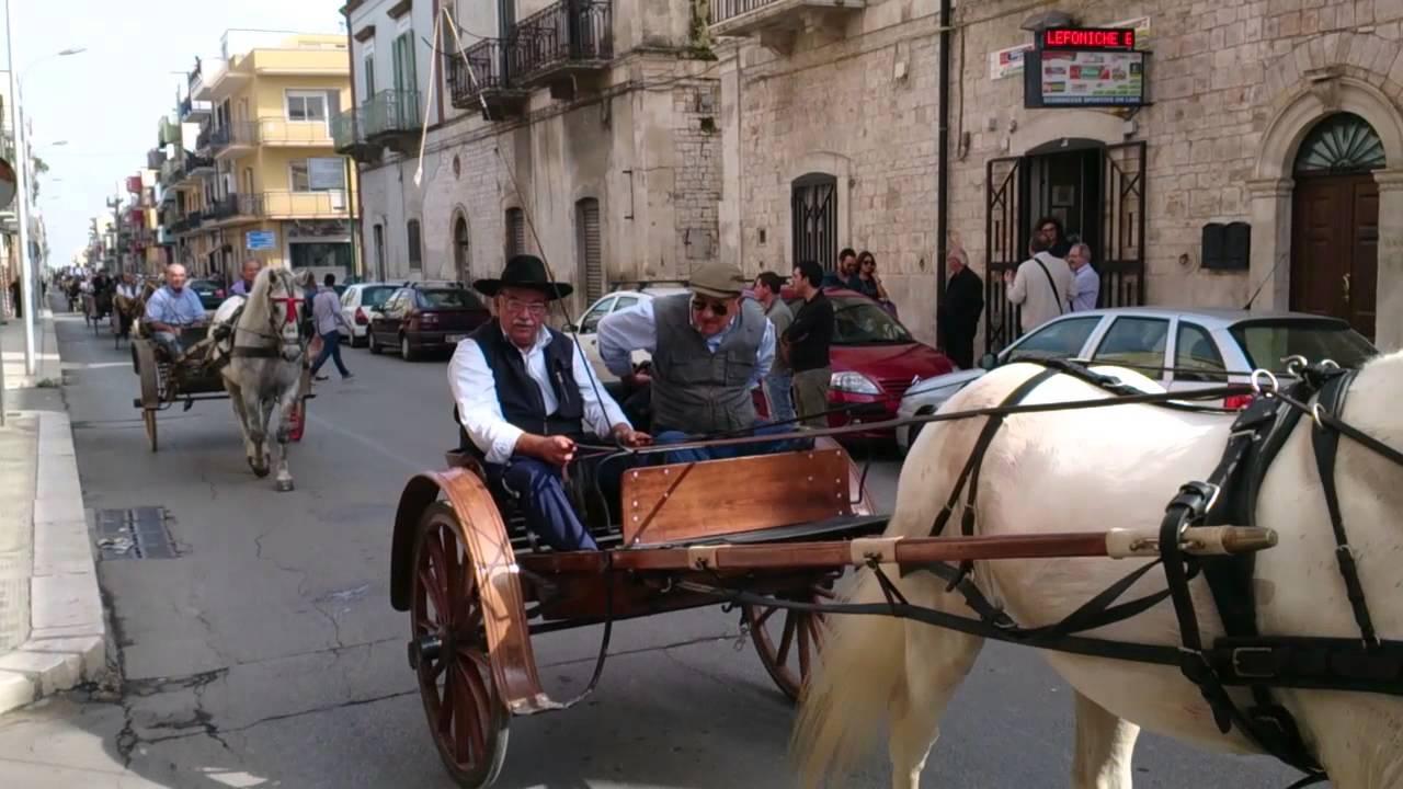 Sfilata di carri e carrozze d 39 epoca 2013 acquaviva delle for Monolocale arredato acquaviva delle fonti