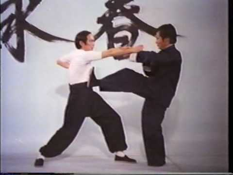 Wing Chun Basic Techniques part 2 Image 1