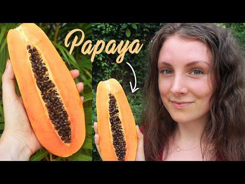 SUPERFOOD PAPAYA | Hautverschönernd, Antiparasitär & Verdauungsfördernd!
