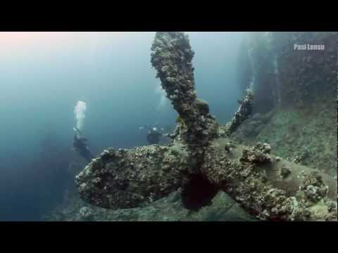 The Wreck of Umbrian, Sudan Red Sea