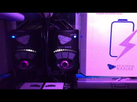 innovative marine fusion 30L 3 months 2 weeks update (cabinet update )