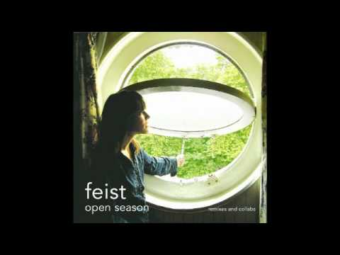 Feist - One Evening (VV Mix)