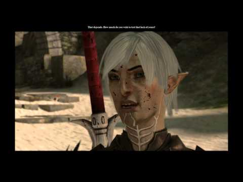 Dragon Age II – Hawke attracts elves…and Anders slash m/m