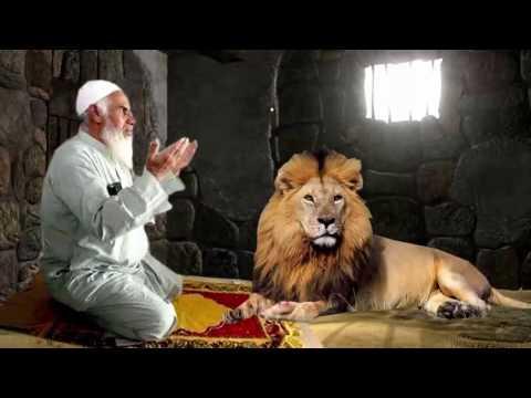 قام بارسال اسد ليقتل شيخ وهو يصلي داخل سجنه - انظر ماذا فعل الاسد سبحان الله