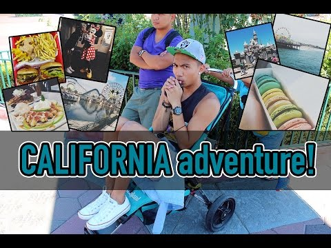 CALIFORNIA ADVENTURE! | PAULZEDRICH