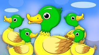 năm con vịt nhỏ | vịt bài hát | Five Little Ducks