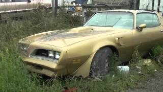 Legendary Muscle Car Barn Finds (The Barn Finders)