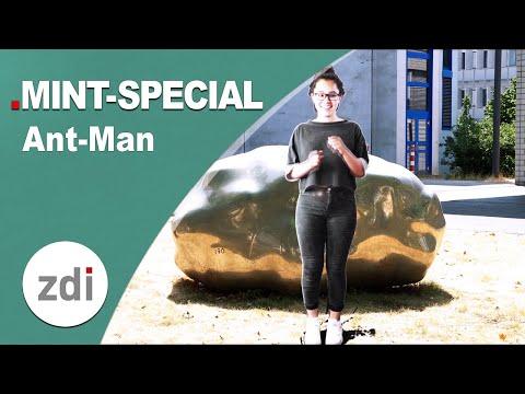 Wie kann man sich schrumpfen? Ant-Man meets MINTFakt Spezial