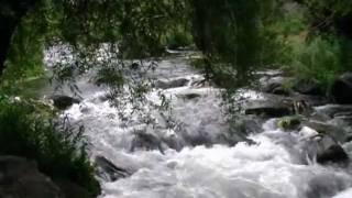 Vídeo 112 de Lara Fabian
