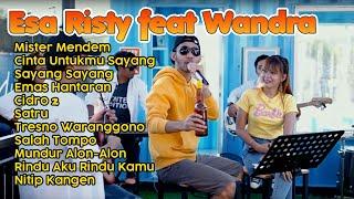 Download lagu Esa Risty feat Wandra Terbaru 2021 | Mister Mendem Full Album