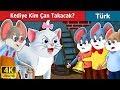Kediye Kim Çan Takacak   Masal dinle   Türkçe peri masallar