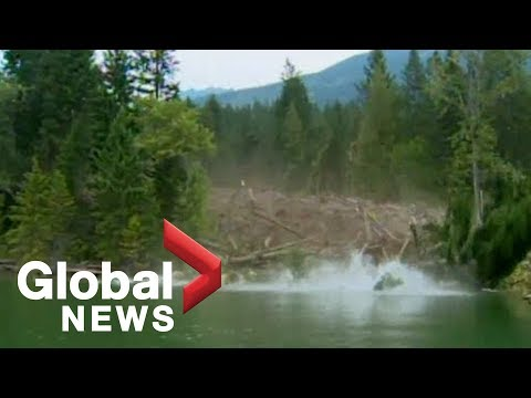 EPIC mudslide caught on camera [Raw Video]