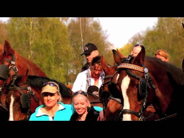 Het Glazenhuis uw bijzondere lokatie - Paarden span op de Veluwe