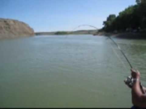 Alberta Sturgeon Fishing 2009- Part 1