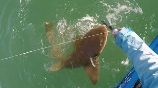 Fun With Mullet (Dead) #2 - Windy Day Tarpon Fishing