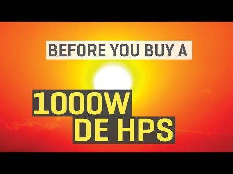 Before You Buy a 1000W DE HPS Grow Light