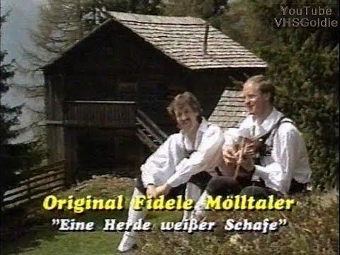 Original fidele Moelltaler - Eine Herde weisser Schafe - 199