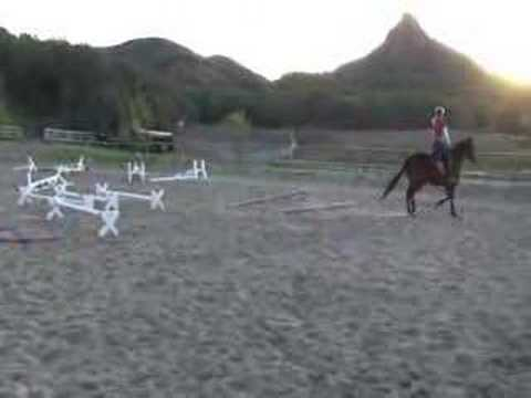 girl riding horse Video