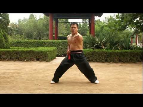 An Wushu - Some Baji Basics and Fight Applications Image 1