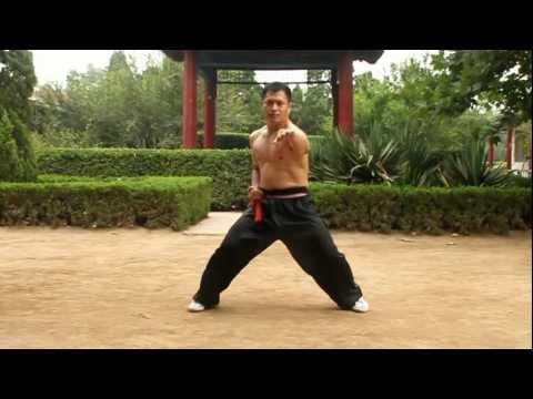 An Wushu - Some Baji Basics and Fight Applications
