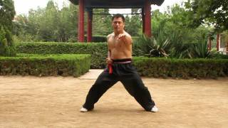 An Wushu - Some Baji Basics and Fight Applications