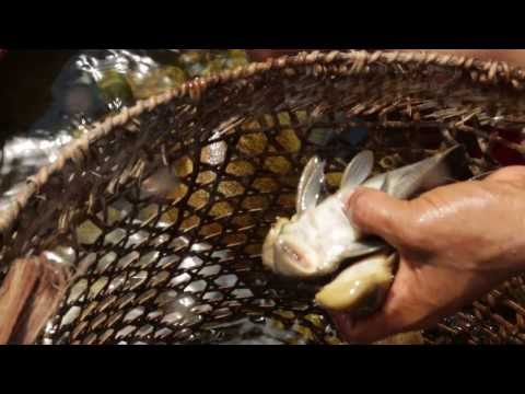 Fishing with the Shuar - La Ruta del Agua Expedition - Kayser Forum for Sustainability