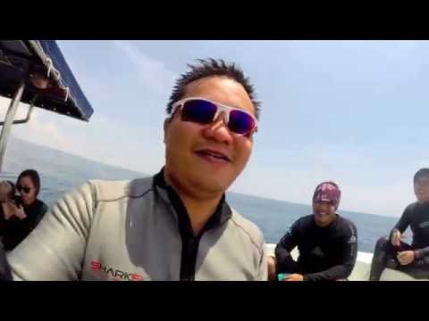 Oil Rig Wreck, Brunei, with Poni Divers