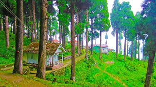 Lava, Kalimpong ↑ Travel Guide 16
