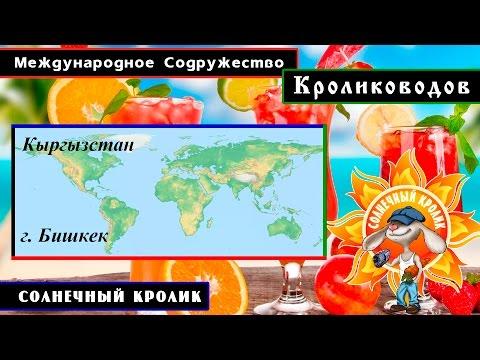 Кролики Кыргызстана г. Бишкек
