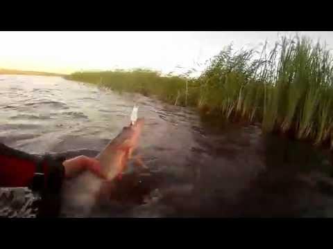 рыбалка на циклоп