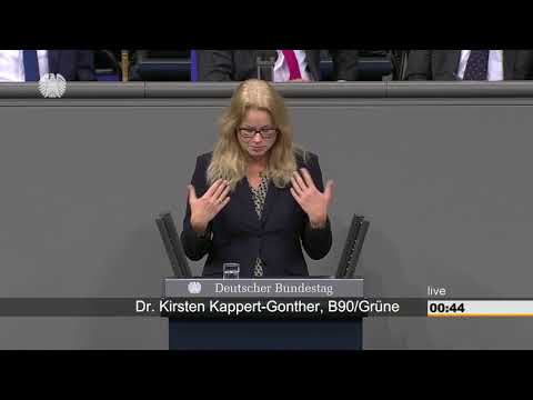 Kirsten Kappert-Gonther zu Frauen im Gesundheitswesen