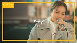 발매 이후 처음 선보이는 소향Sohyang의 'Stay'♬ 라이브  비긴어게인 오픈마이크