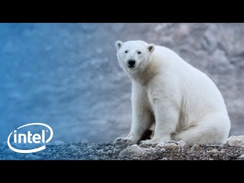 Above the Arctic: An Intel Drone Expedition   Intel