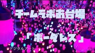 ????? ??? Tokyo???????????Ray vlog w ECN