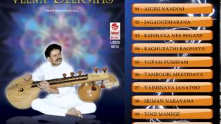 Chandra - Veena Instrumental Music | B M Chandra Shekhar | Karoke Songs