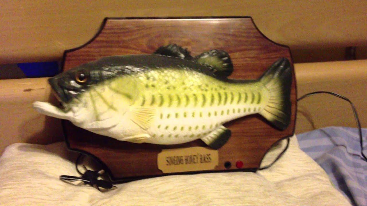Singing fish singing honey bass youtube for Talking bass fish